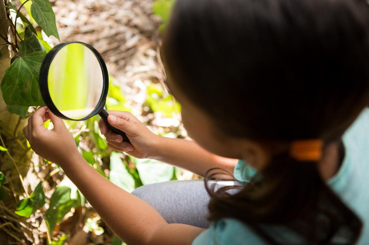 Raziskovalne naloge o biodiverziteti za osnovnošolce