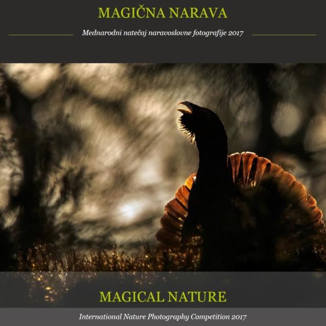 Magična narava 2017