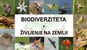 Prosojnice za predavanje o biodiverziteti