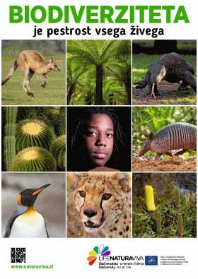 Mestni plakati o biodiverziteti – po svetu