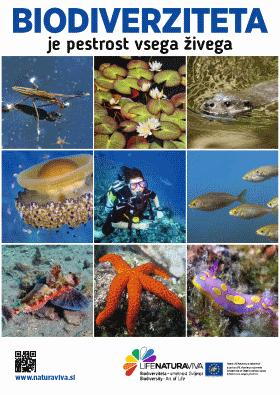 Mestni plakati o biodiverziteti – v vodi