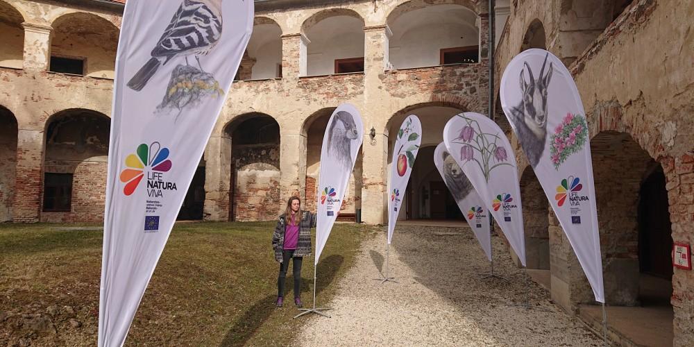 Nove zastave s sporočilnimi vrstami projekta Life Naturaviva