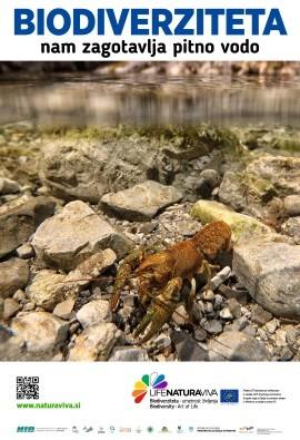 Mestni plakati o pomenu biodiverzitete – voda