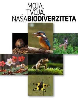 Brošura o biodiverziteti – SLO