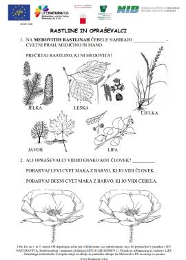 Učni listi za osnovne in srednje šole v Botaničnem vrtu