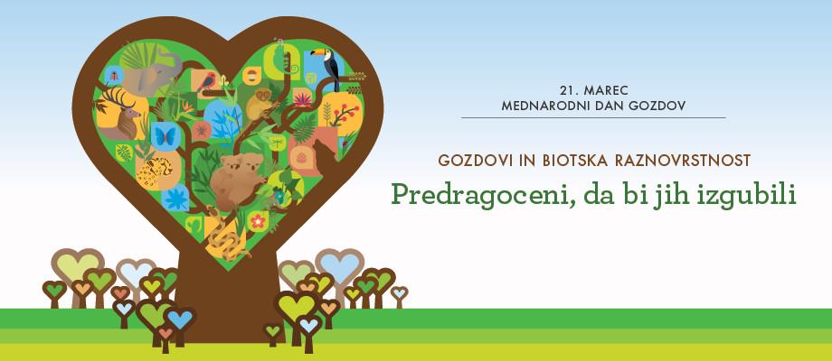 21. marec – Mednarodni dan gozdov