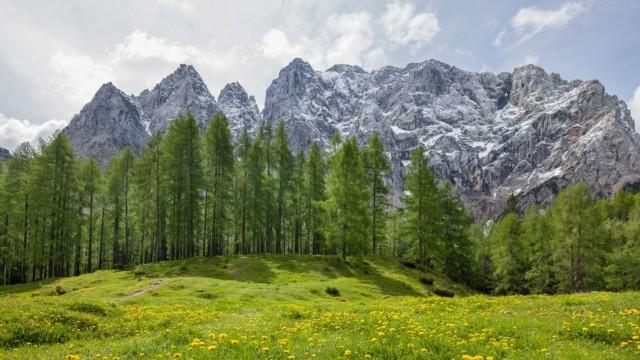 Čas za naravo in biodiverziteto!