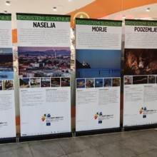 Poletne razstave projekta LIFE Naturaviva