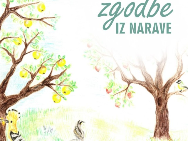 Zgodbe iz narave