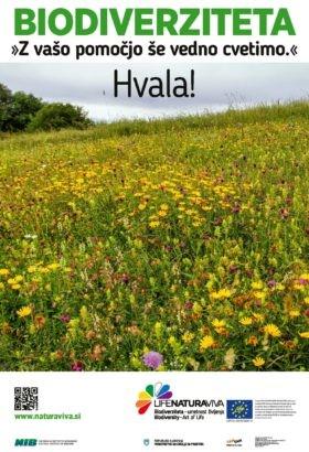 Mestni plakati o varovanju biodiverzitete – cvetoči travnik