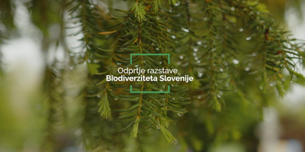 Odprtje razstave Biodiverziteta Slovenije