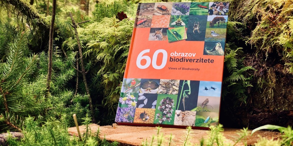 PREDAVANJA: Biodiverziteta je osnova delovanja ekosistemov